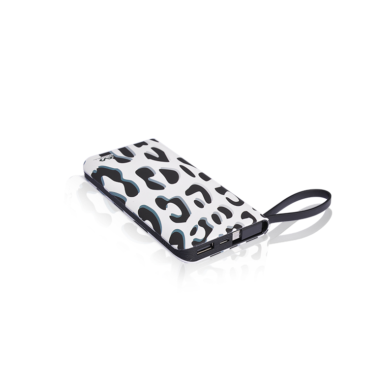 Veaqee Portable 10000mah power bank with usb cable P05