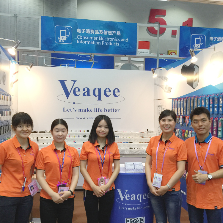 Veaqee Previously Exhibition (2014-2017)