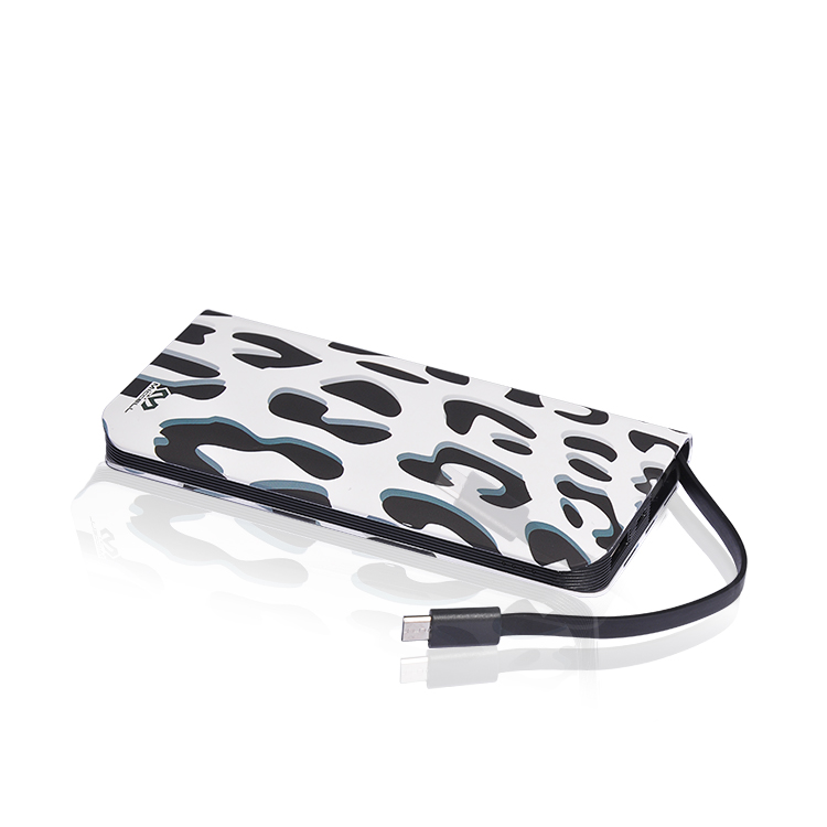 10000mAh Usb Power Bank With cable(VQ-P05)